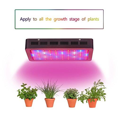Cheap Grow Light