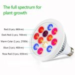 cheap Grow Light For Indoor