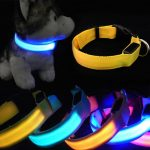 Sparkling Revival LED Dog Collar