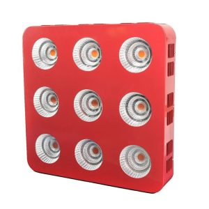 5 Best LED Grow Light